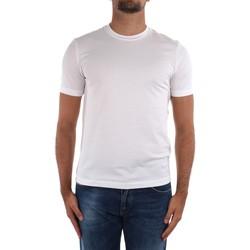 Oblačila Moški Majice s kratkimi rokavi Cruciani CUJOSB G30 White