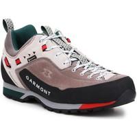 Čevlji  Moški Pohodništvo Garmont Dragontail LT GTX 000238 Multicolor