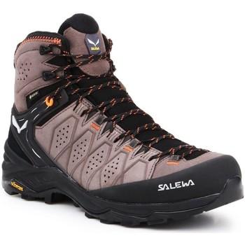 Čevlji  Moški Pohodništvo Salewa MS Alp Trainer 2 Mid GTX 61382-7512 black, brown