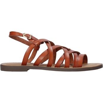Čevlji  Ženske Sandali & Odprti čevlji Refresh 72231 Rjav