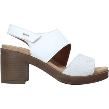 Čevlji  Ženske Sandali & Odprti čevlji IgI&CO 7170244 Biely