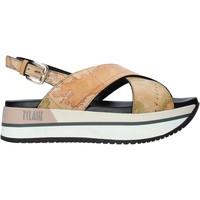 Čevlji  Ženske Sandali & Odprti čevlji Alviero Martini E109 8391 Rjav
