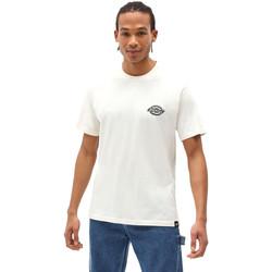 Oblačila Moški Majice s kratkimi rokavi Dickies DK0A4XENECR1 Biely