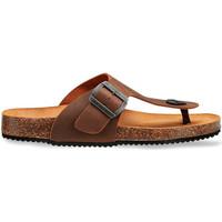 Čevlji  Moški Sandali & Odprti čevlji Docksteps DSM228401 Rjav