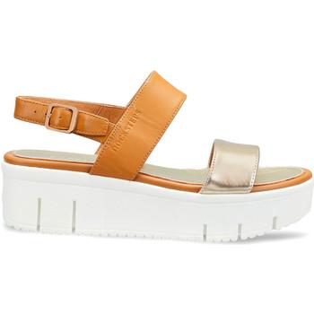 Čevlji  Ženske Sandali & Odprti čevlji Docksteps DSW953101 Rjav