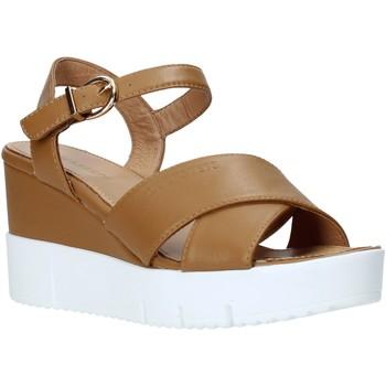Čevlji  Ženske Sandali & Odprti čevlji Docksteps DSW952001 Rjav