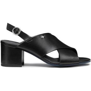 Čevlji  Ženske Sandali & Odprti čevlji Alberto Guardiani AGW003405 Črna