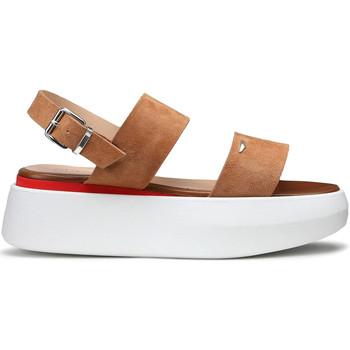 Čevlji  Ženske Sandali & Odprti čevlji Alberto Guardiani AGW004101 Bež