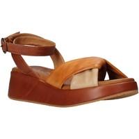 Čevlji  Ženske Sandali & Odprti čevlji Sshady L2401 Rjav