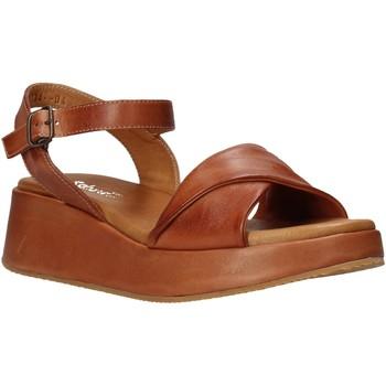 Čevlji  Ženske Sandali & Odprti čevlji Sshady L2402 Rjav