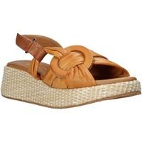 Čevlji  Ženske Sandali & Odprti čevlji Sshady L2406 Rjav