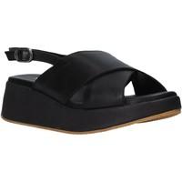 Čevlji  Ženske Sandali & Odprti čevlji Sshady L2410 Črna