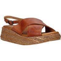 Čevlji  Ženske Sandali & Odprti čevlji Sshady L2410 Rjav