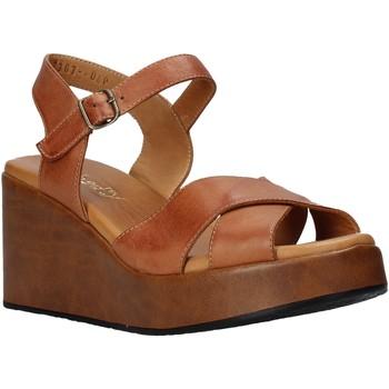 Čevlji  Ženske Sandali & Odprti čevlji Sshady L2503 Rjav