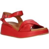 Čevlji  Ženske Sandali & Odprti čevlji Sshady L2402 Rdeča