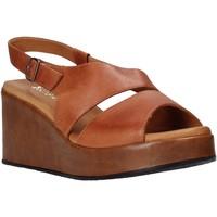 Čevlji  Ženske Sandali & Odprti čevlji Sshady L2502 Rjav