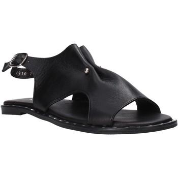 Čevlji  Ženske Sandali & Odprti čevlji Sshady MRT2210 Črna