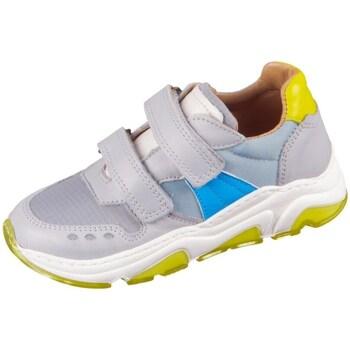 Čevlji  Otroci Nizke superge Bisgaard 407301211530 Siva, Modra, Rumena
