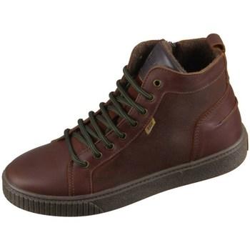 Čevlji  Otroci Visoke superge Bisgaard 618062201322 Rjava