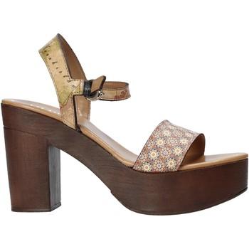 Čevlji  Ženske Sandali & Odprti čevlji Alviero Martini E112 626A Rjav
