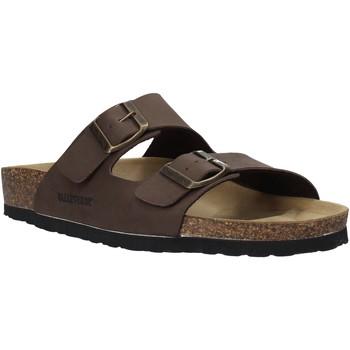 Čevlji  Moški Natikači Valleverde G59900 Rjav