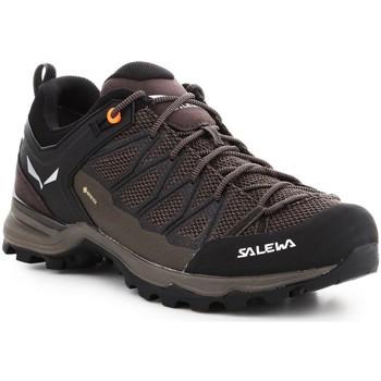 Čevlji  Moški Pohodništvo Salewa Mtn Trainer Lite GTX 61361-7512 brown
