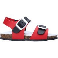 Čevlji  Otroci Sandali & Odprti čevlji Bionatura LUCA Rdeča