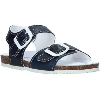 Čevlji  Otroci Sandali & Odprti čevlji Bionatura LUCA Modra