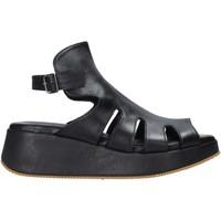 Čevlji  Ženske Sandali & Odprti čevlji Sshady L2403 Črna