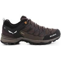 Čevlji  Moški Pohodništvo Salewa Mtn Trainer Lite Gtx Rjava