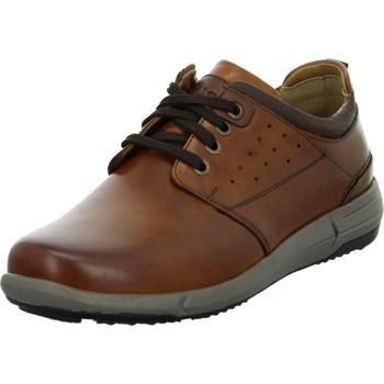Čevlji  Moški Čevlji Derby Josef Seibel Enrico 13 Rjava