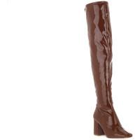 Čevlji  Ženske Visoki škornji Steve Madden COGNAC JAYME Marrone