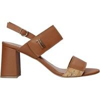 Čevlji  Ženske Sandali & Odprti čevlji Alviero Martini E124 587A Rjav