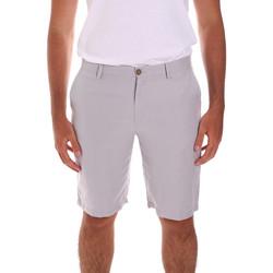 Oblačila Moški Kratke hlače & Bermuda Navigare NV56025 Siva