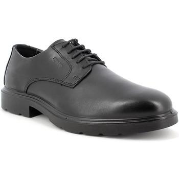 Čevlji  Moški Čevlji Derby IgI&CO 8100300 Črna