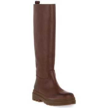 Čevlji  Ženske Mestni škornji    Priv Lab 325 NUT VITELLO Marrone