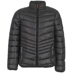 Oblačila Moški Puhovke Yurban DALE Črna