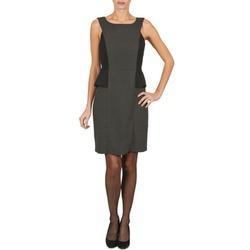 Oblačila Ženske Kratke obleke Manoukian PEPLUM Črna