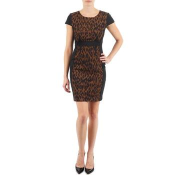 Oblačila Ženske Kratke obleke Manoukian EMMA Črna