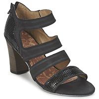 Čevlji  Ženske Sandali & Odprti čevlji Dkode CHARLIZE Črna