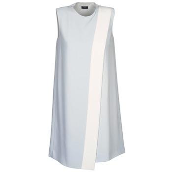 Oblačila Ženske Kratke obleke Joseph SOL Siva / Bela