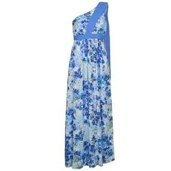 Oblačila Ženske Dolge obleke Manoukian 613356 Modra