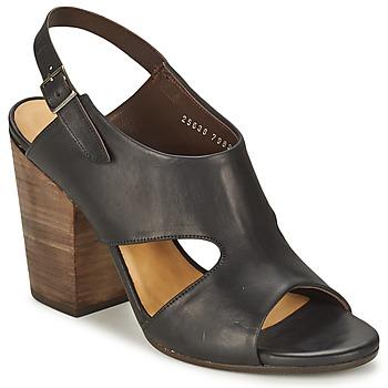 Čevlji  Ženske Sandali & Odprti čevlji Coclico CASPAR Črna