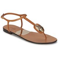 Čevlji  Ženske Japonke Roberto Cavalli XPX243-PZ220 Kostanjeva