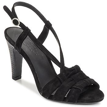 Čevlji  Ženske Sandali & Odprti čevlji n.d.c. SOFIA Črna