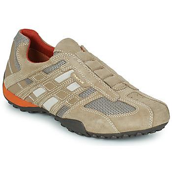 Čevlji  Moški Nizke superge Geox SNAKE L Bež