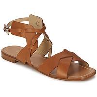 Čevlji  Ženske Sandali & Odprti čevlji Etro 3947 Kostanjeva