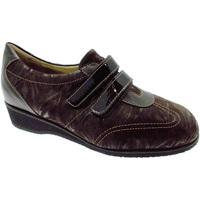 Čevlji  Ženske Nizke superge Calzaturificio Loren LOL8050m marrone