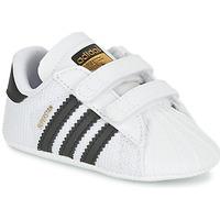 Čevlji  Otroci Nizke superge adidas Originals SUPERSTAR CRIB Bela