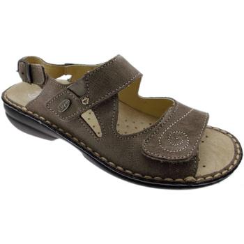 Čevlji  Ženske Sandali & Odprti čevlji Calzaturificio Loren LOM2595ta tortora